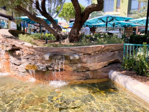 Downtown Disney water