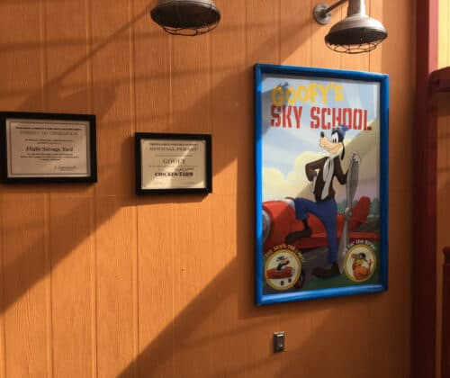 Goofy Sky School