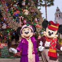 Holidays at Disneyland Resort 2019