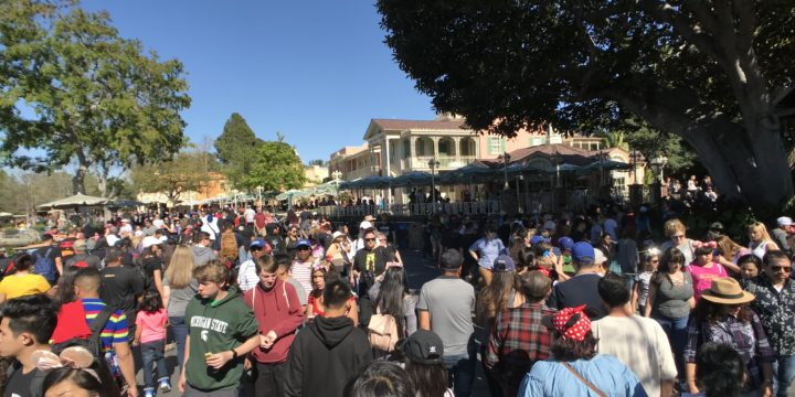 How to Deal Disneyland Crowds