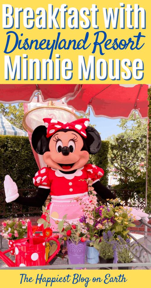 Minnie Mouse Breakfast Plaza Inn
