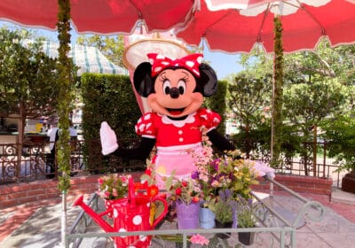 Minnie & Friends Character Dining