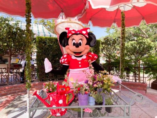 Minnie Mouse breakfast
