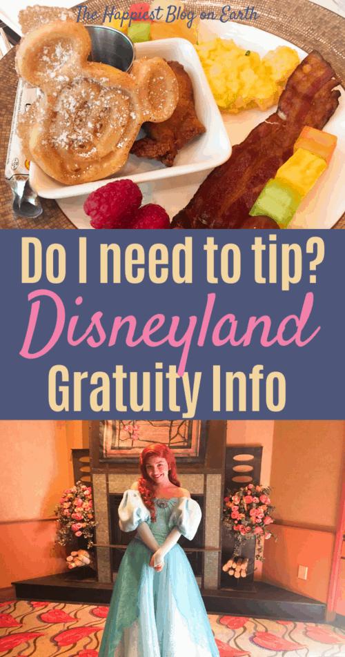 Disneyland gratuity
