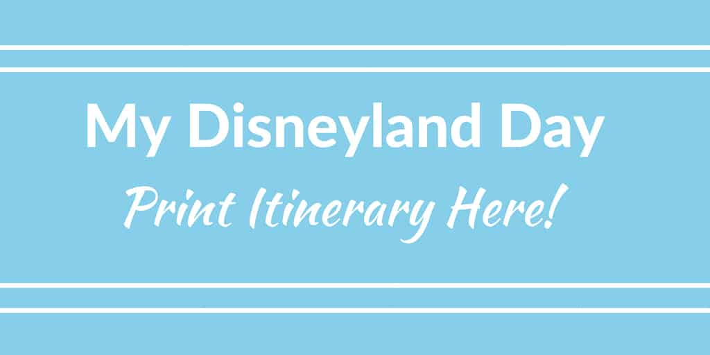 My Disneyland Day