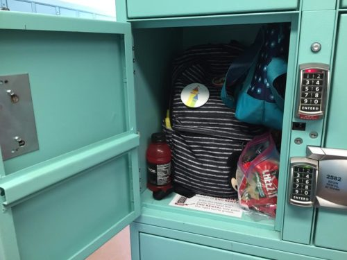 inside Disneyland locker