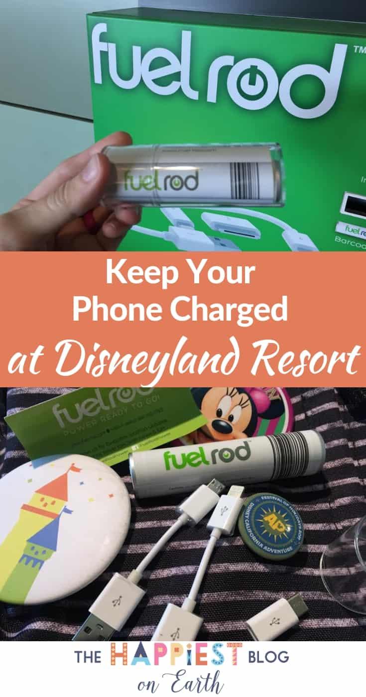 Fuel Rod Disneyland