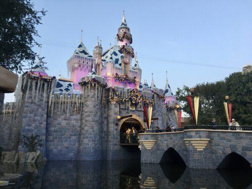 Sleeping Beautys Winter Castle