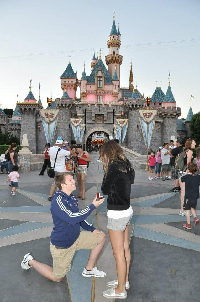 Disneyland castle proposal