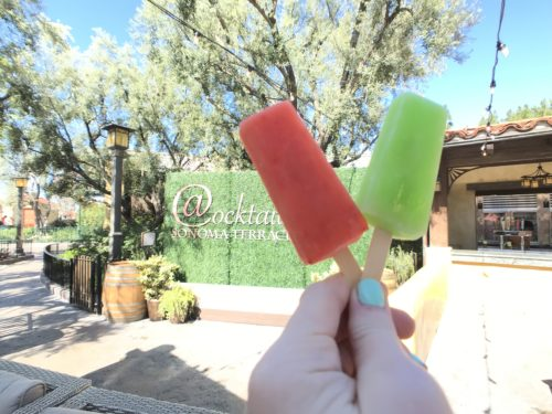 Food and wine popsicle