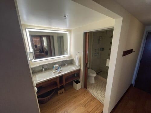 Grand Californian bathroom shower