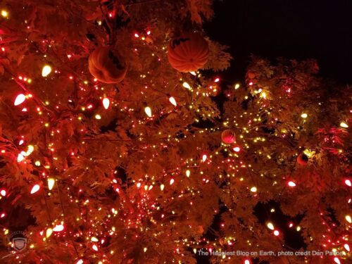 Disneyland Halloween Tree