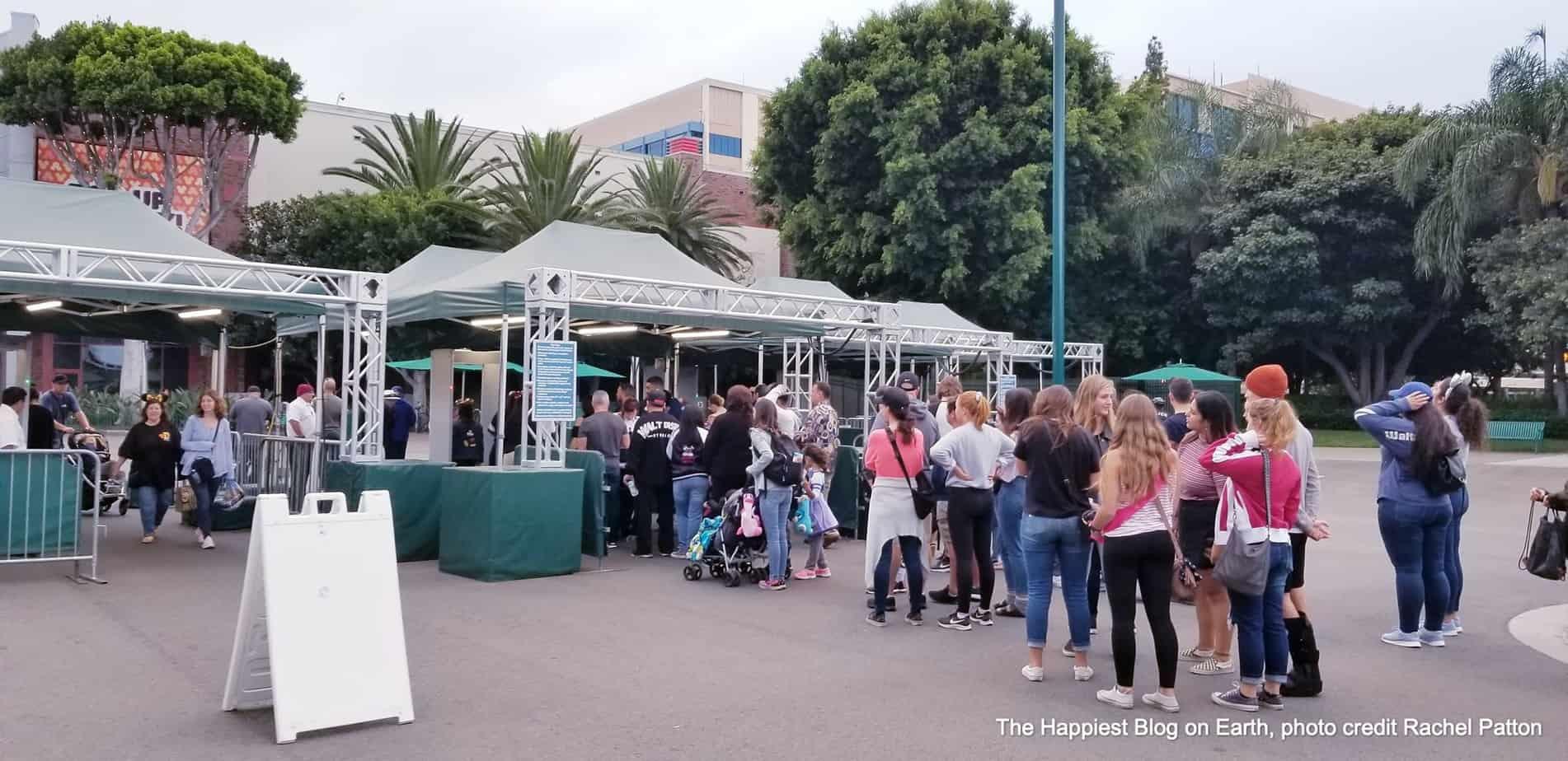 Disneyland walkway security