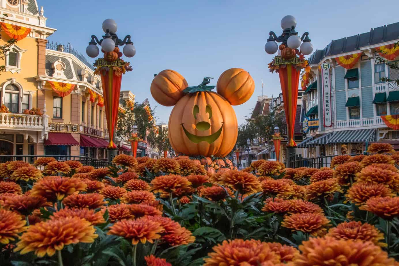 Fall season Disneyland