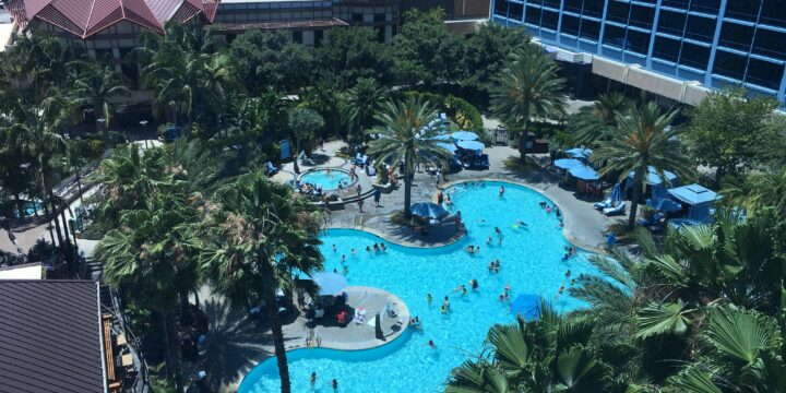 The Disneyland Hotel Deals & Review