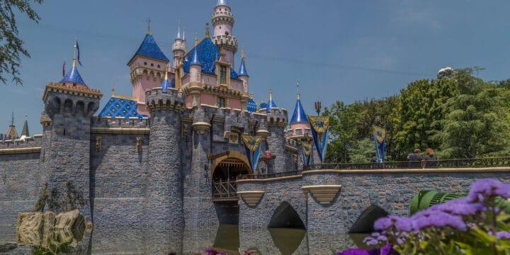 Disneyland Homeschool Schedule