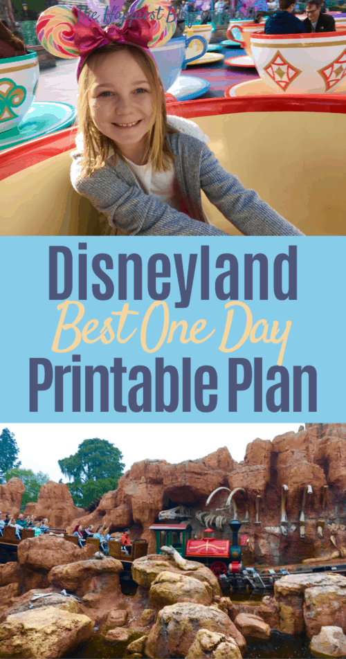 One Day at Disneyland Plan