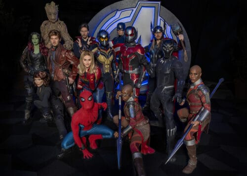 Super Heroes Avengers Disneyland