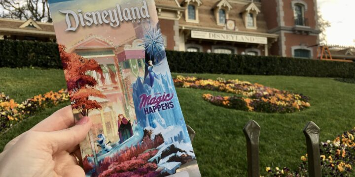 Tips and Gratuity at Disneyland Resort