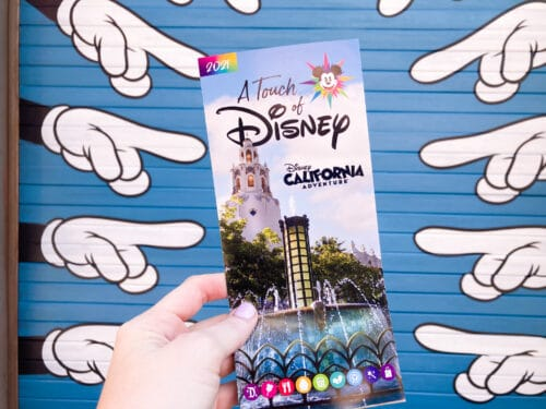A Touch of Disney guide