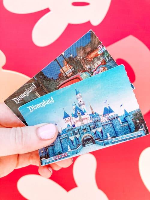 Disneyland castle ticket