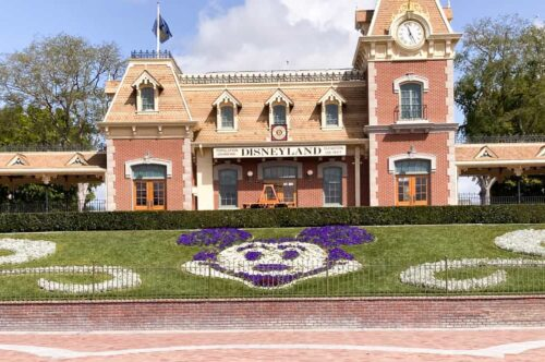 Mickey Floral Disneyland