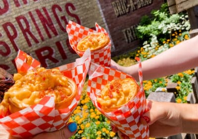 California Adventure Meals on a Budget